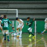 Elitefoot x Palmeiras-2